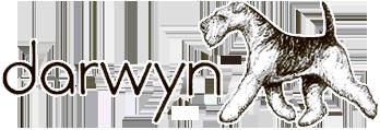 Darwyn Welsh Terriers